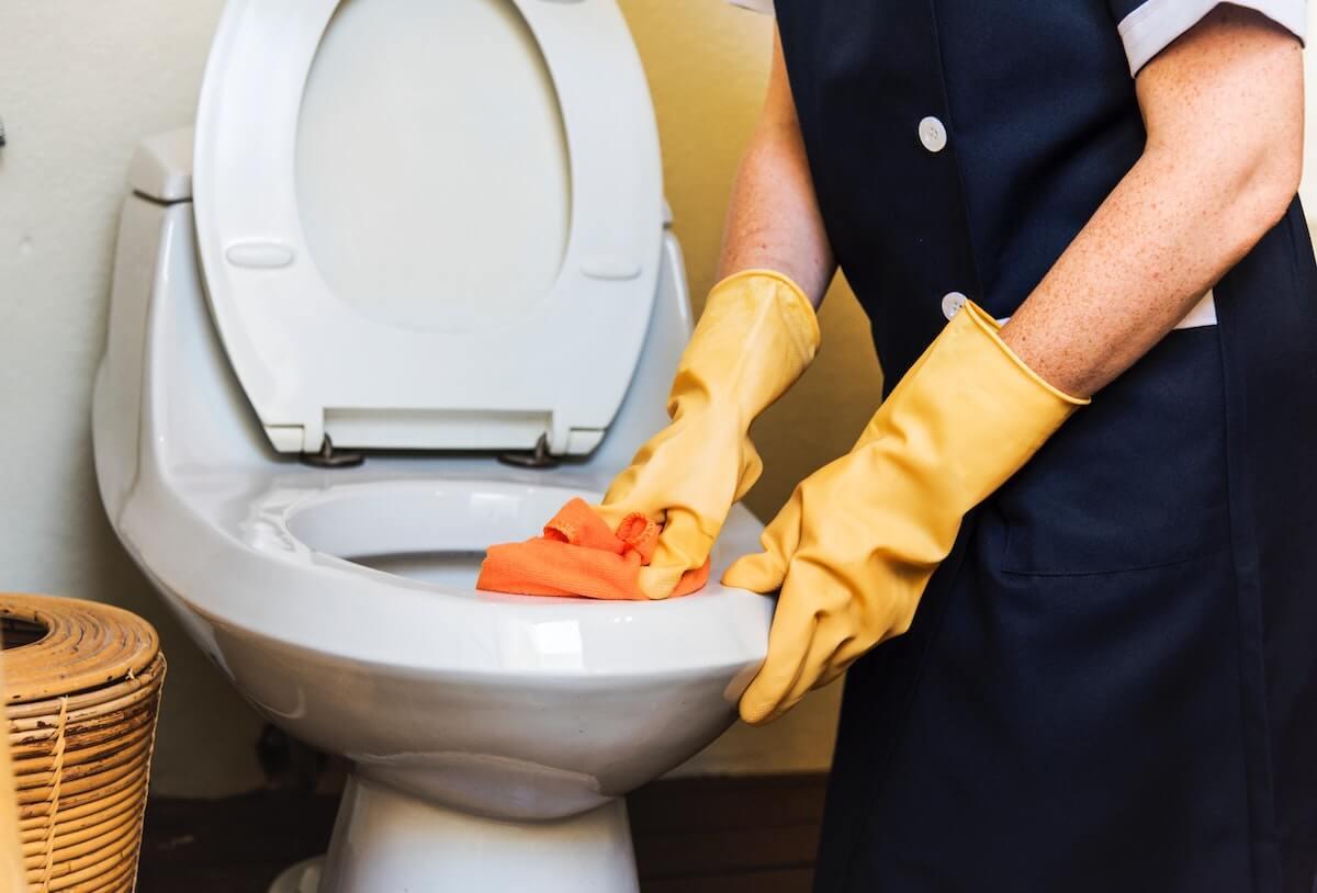 pulire i sanitari