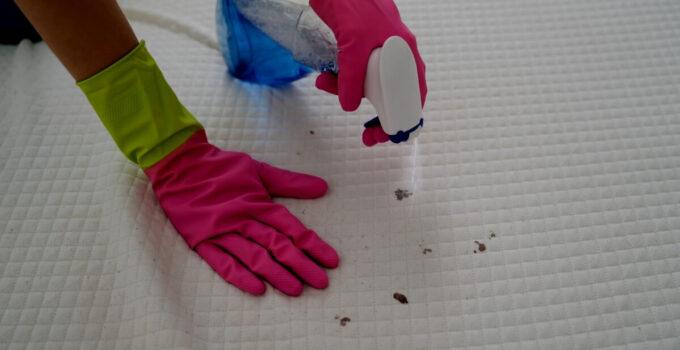 Come disinfettare materassi e cuscini
