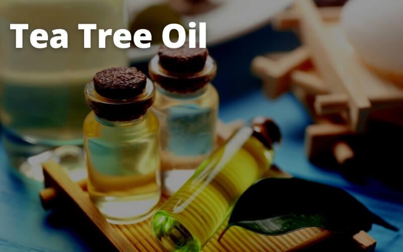 Elimina i batteri con il tea tree oil